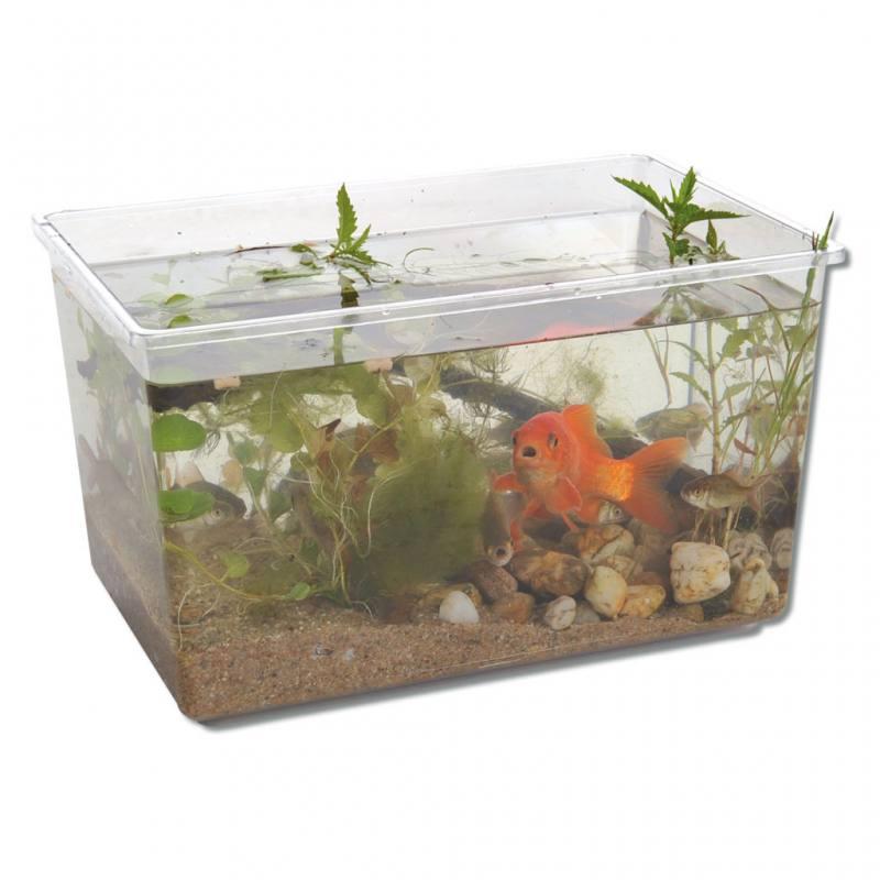 Aquarium aus Kunststoff - in 4 verschiedenen Größen