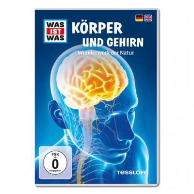 DVD Körper und Gehirn - Einzellizenz