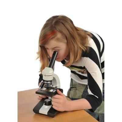 Hochwertiges Schülermikroskop LED-J