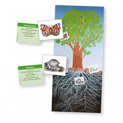 Der Baum als Lebensraum