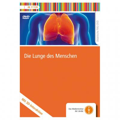 Die Lunge des Menschen