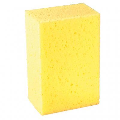Tafelschwamm - gelb
