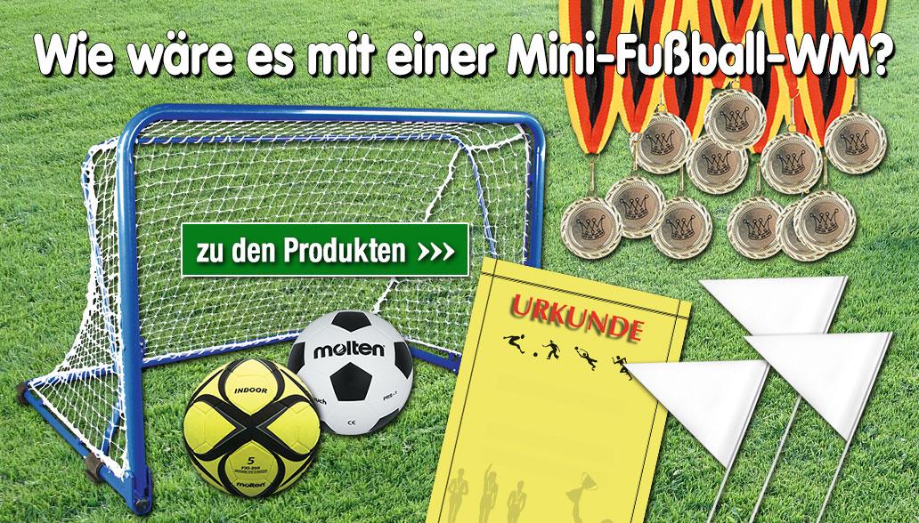 Mini-Fußball-WM
